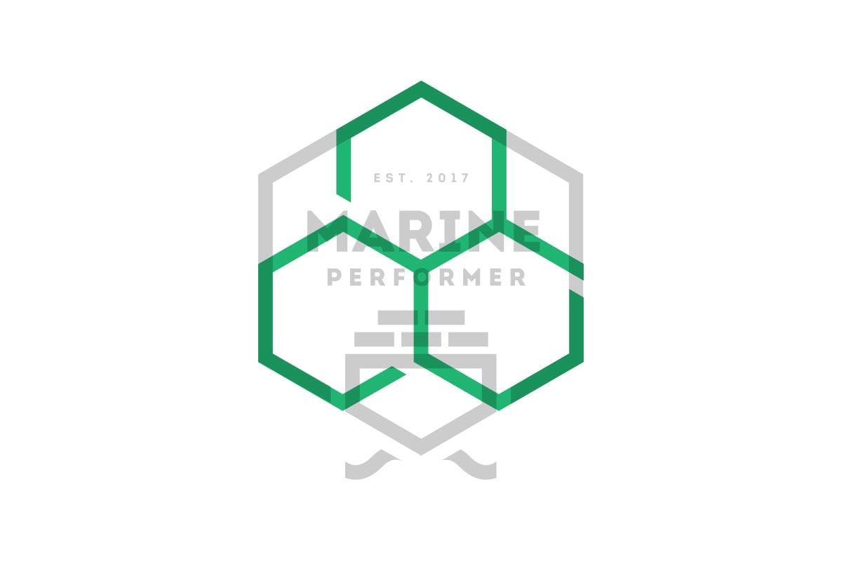 People Performer logosammenligning med Marine Performer - Havdur Design AS